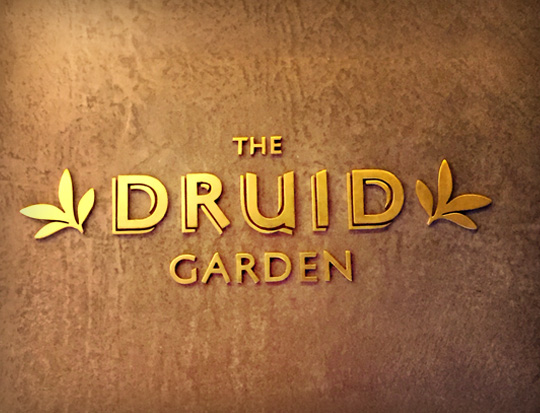 The Druid Garden - North Bangalore's favourite Brewery & Hangout!
